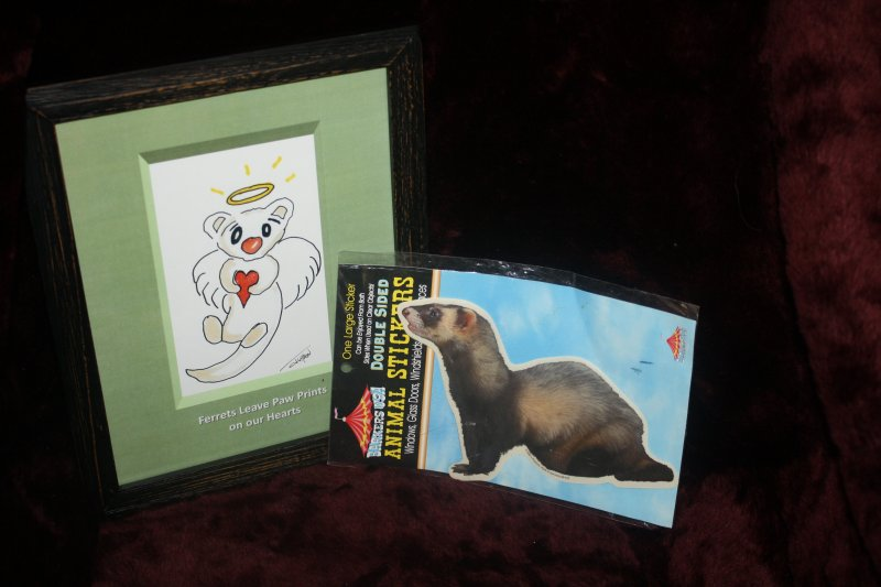 47. Ferret print(grn)w/sticker