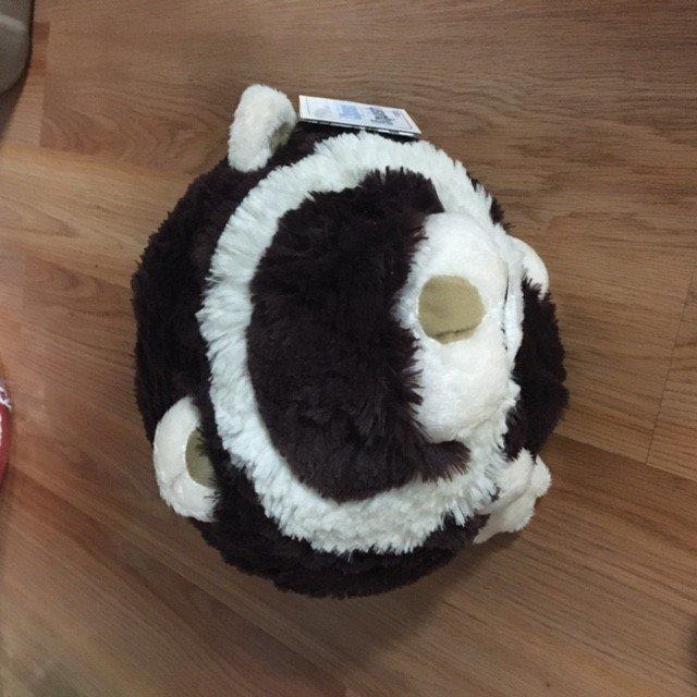 104. squishy ferret