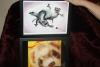 72. 2 ferret framed pics