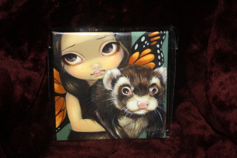 "303. Jasmine ""sable"" ferret canvas"