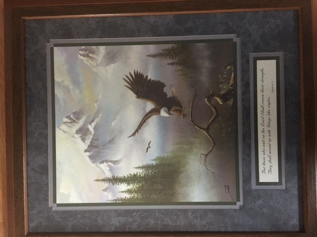 234. Eagle picture